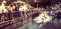 1920s Frog Dives by Montreat Dam